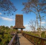 在树丛Alemao德语森林公园-库里奇巴,巴拉那,巴西的哲学家塔 免版税图库摄影
