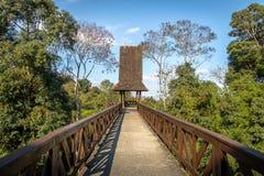 在树丛Alemao德语森林公园-库里奇巴,巴拉那,巴西的哲学家塔 免版税库存图片