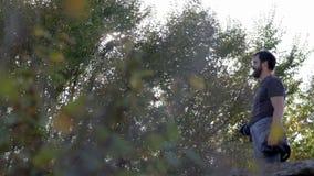 在树中的人 股票视频