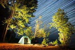 在树中的帐篷在海岸 库存图片
