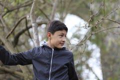 在树中的男孩 免版税库存照片