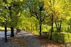 在秋天公园的道路 库存图片