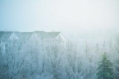 在树之外的一个公寓屋顶在冬天 免版税库存照片