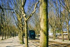 在树之间的一辆电车在红葡萄酒公园  免版税库存图片
