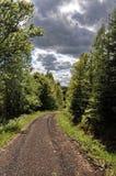 在树之间的土路与黑暗的天空 免版税库存照片