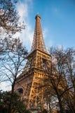 在树之间的艾菲尔铁塔 免版税库存照片