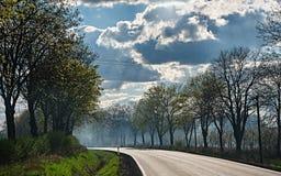 在树之间的路在与白色云彩的天空下 免版税图库摄影