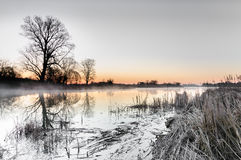 在树包围的一个狂放的池塘的色彩黎明在秋天早晨 免版税库存图片