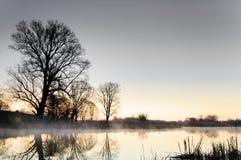 在树包围的一个狂放的池塘的色彩黎明在秋天早晨 库存照片