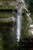 在树后您能看到瀑布 图库摄影