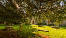 在树后的三位一体教会南门面 免版税库存照片