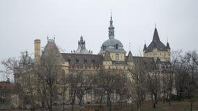 在树后的城堡 免版税库存照片