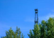 在树后的塔 免版税库存图片