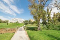 在树和可爱的蓝天旁边的高尔夫球场路 图库摄影
