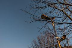 在树和天空背景的现代CCTV 库存照片