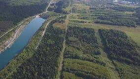 在树和湖的惊人的看法在秋天期间晒干 射击 在一个湖的天蓝色的岸的顶视图有森林的 股票视频