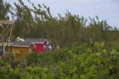 在树和灌木后的海滩棚子 免版税库存图片