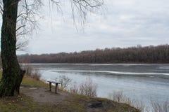 在树和冻河附近的长木凳 免版税库存照片