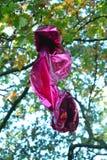 在树困住的金属气球 免版税图库摄影