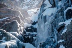 在树带界线的冰柱落瀑布 库存照片