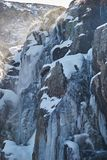 在树带界线的冰柱落瀑布 免版税图库摄影