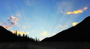 在树带界线的黎明前云隙光场面 免版税库存照片