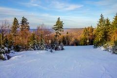 在树带界线西维吉尼亚的美好的冬天风景 免版税库存图片