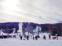 在树带界线西维吉尼亚的美好的冬天风景 免版税库存照片