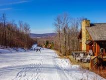 在树带界线滑雪胜地西维吉尼亚附近的风景 免版税图库摄影