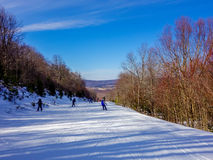 在树带界线滑雪胜地西维吉尼亚附近的风景 免版税库存图片