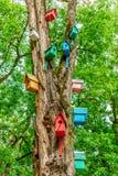 在树干的五颜六色的被洗染的木刚孵出的雏箱子在夏天停放 室外创造性的艺术装饰和关心鸟的 免版税图库摄影