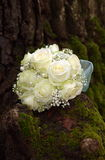 在树干的新娘花束 免版税库存图片