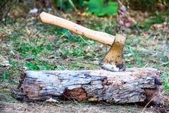 在树干的轴 免版税库存照片