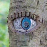 在树干雕刻的眼睛 免版税库存照片