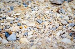 在树木繁茂的路的小岩石本质上在河附近的 免版税库存图片