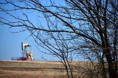 在树枝后的油泵 免版税库存图片