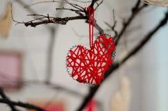 在树枝的红色心脏特写镜头 节日快乐庆祝华伦泰` s爱心脏的天概念 免版税库存照片