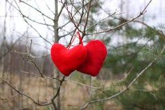 在树枝的红色长毛绒心脏在冬天停放 库存图片