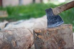 在树桩别住的轴,树,木柴裁减,为c做准备 免版税图库摄影