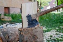 在树桩别住的轴,树,木柴裁减,为c做准备 图库摄影