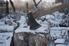 在树桩困住的轴 免版税库存图片