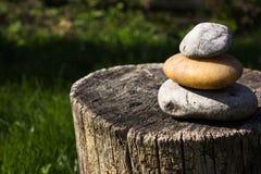 在树桩树的石头 绿色背景 免版税库存照片