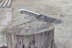 在树桩的刀子 ?? 杀害的鸟树桩 免版税库存照片