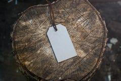 在树桩的大模型标签 库存图片