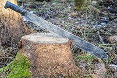 在树桩的大砍刀 免版税库存照片