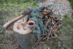 在树桩的轴在芯片和切好的木柴旁边 库存图片