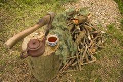 在树桩的轴在芯片和切好的木柴旁边 图库摄影