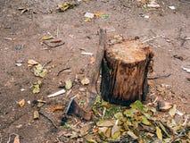 在树桩的轴 有木把柄的一个轴切开的tr 免版税库存照片
