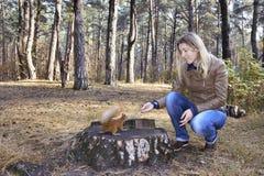 在树桩附近的森林女孩喂养与坚果的一只灰鼠 库存图片