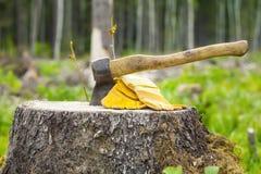 在树桩雕刻的轴 免版税库存照片
